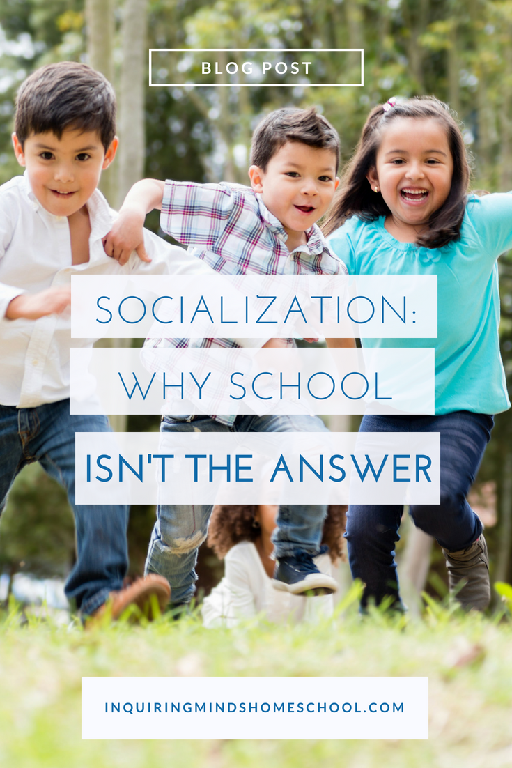Socialization: Why School Isn't The Answer